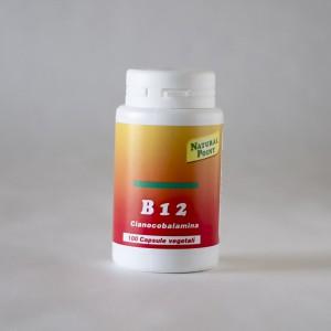 B12 - NaturalPoint