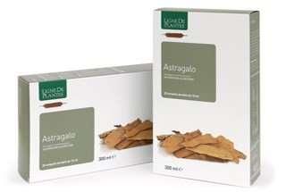 Astragalo ligne de plantes lerbolaia for Ligne de plantes