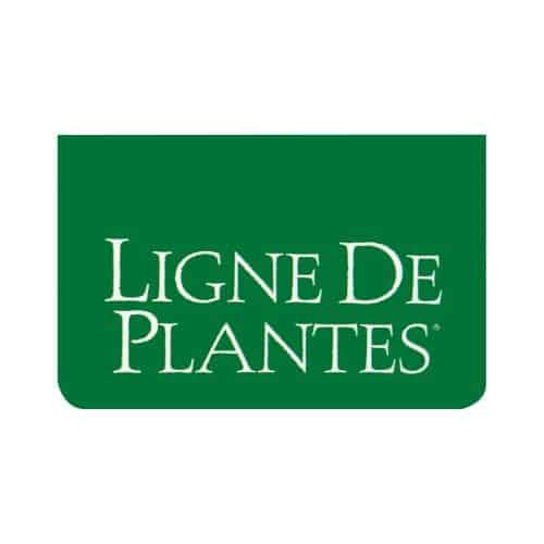 Ligne de Plantes